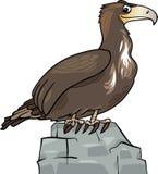 Pájaro salvaje del águila de la historieta ilustración del vector