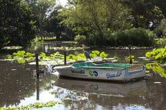 Pájaro y barco del tallo en la charca en los jardines de Batanical Fotos de archivo