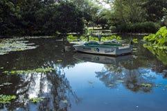 Pájaro y barco en la charca en los jardines de Batanical Foto de archivo
