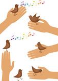 Pájaro y mano Imagen de archivo