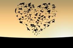 Pájaros Imagen de archivo libre de regalías