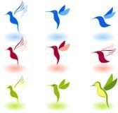 Pájaros Fotos de archivo