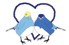 Pájaros azules en amor Fotografía de archivo libre de regalías