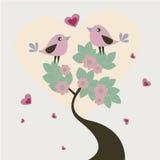 Pájaros cariñosos Fotos de archivo libres de regalías