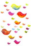 Pájaros coloridos de la acuarela Foto de archivo libre de regalías