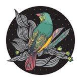 Pájaros con las plumas y las flores. Fotografía de archivo