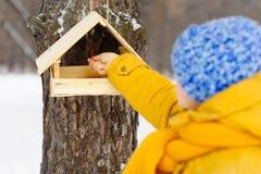 Pájaros de alimentación de la muchacha hermosa en invierno Foto de archivo libre de regalías