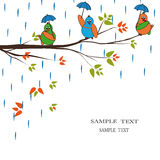 Pájaros de la historieta en lluvia Fotos de archivo