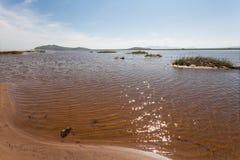Pájaros de la migración de la primavera del sitio del prado del río del terreno de aluvión foco hacia números más inferiores y me Foto de archivo