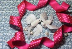 Pájaros de la paloma del blanco del símbolo del día del ` s de la tarjeta del día de San Valentín Fotos de archivo