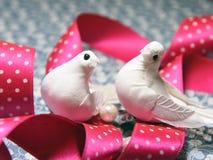 Pájaros de la paloma del blanco del símbolo del día del ` s de la tarjeta del día de San Valentín Foto de archivo libre de regalías