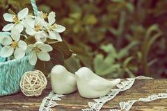 Pájaros de la porcelana contra la perspectiva de una hierba verde Imagenes de archivo