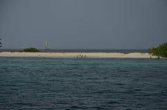 P?jaros de la tira de la playa de las isletas de Trinidad y Tobago y barco de vela del Caribe imagen de archivo