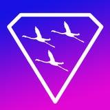 Pájaros de Logo Banner Image Flying Flamingo en Diamond Shape en fondo magenta púrpura azul ilustración del vector