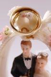 Pájaros de los anillos de bodas Fotografía de archivo libre de regalías