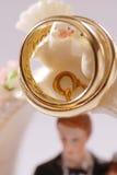 Pájaros de los anillos de bodas Imagen de archivo