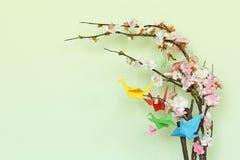 Pájaros de papel coloridos de la papiroflexia en ramas florecientes de la cereza Imagen de archivo libre de regalías
