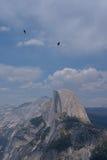 Pájaros de vuelo sobre las montañas de la roca Fotos de archivo