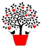 Pájaros del árbol y del amor del corazón Fotografía de archivo