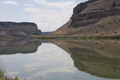 Pájaros del área de la presa, Idaho Foto de archivo