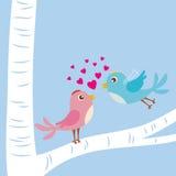 Pájaros del amor Fotografía de archivo
