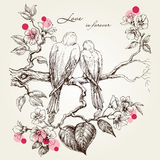 Pájaros del amor en la ramificación de árbol stock de ilustración