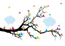Pájaros del color en el árbol, vector ilustración del vector