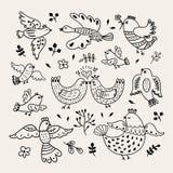 Pájaros dibujados mano divertida del vector Los pájaros decorativos del garabato con las plantas y las flores diseñan elementos Fotos de archivo libres de regalías