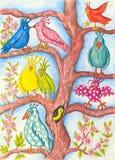 Pájaros divertidos en un árbol Foto de archivo libre de regalías