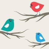 Pájaros en amor Fotos de archivo libres de regalías