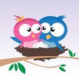 Pájaros en amor Fotografía de archivo libre de regalías