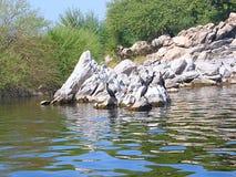 Pájaros en el lago Jaisamand, cerca de Udaipur, Rajasthán Foto de archivo libre de regalías