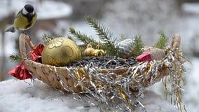 Pájaros en la Navidad almacen de metraje de vídeo