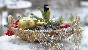 Pájaros en una cesta con las semillas para la Navidad