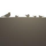 Pájaros en una pared ilustración del vector