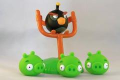 Pájaros enojados Imagen de archivo libre de regalías