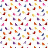 pájaros fondo inconsútil del bebé con los pájaros del color Fotografía de archivo libre de regalías