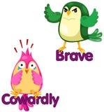 Pájaros lindos con palabras opuestas Imagen de archivo libre de regalías