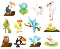 Pájaros lindos de la historieta Imágenes de archivo libres de regalías