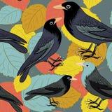 Pájaros negros en las hojas de otoño coloridas Modelo inconsútil Ejemplo del vector en fondo gris Fotos de archivo libres de regalías