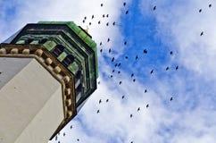 Pájaros negros sobre una torre de iglesia Foto de archivo libre de regalías