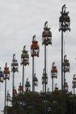 Pájaros que cantan contets Foto de archivo libre de regalías