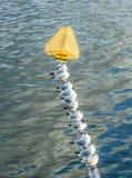 Pájaros que se sientan en una pila de un puente Imágenes de archivo libres de regalías