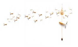 Pájaros que vuelan detrás Imagen de archivo libre de regalías