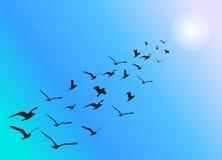 Pájaros que vuelan en la formación con tono caliente imagenes de archivo