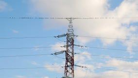 Pájaros que vuelan lejos del alambre eléctrico metrajes