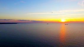 Pájaros que vuelan sobre el mar en la puesta del sol metrajes