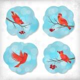 Pájaros Rowan Tree Branches de la etiqueta engomada de la Navidad del invierno Imágenes de archivo libres de regalías
