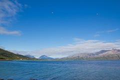 Pájaros sobre el fiordo Foto de archivo