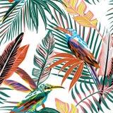Pájaros tropicales abstractos en el fondo inconsútil de la selva ilustración del vector